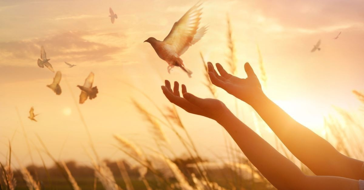 66451-lifted-hands-dove-sunset-gettyimages-ipopba.1200w.tn.jpg